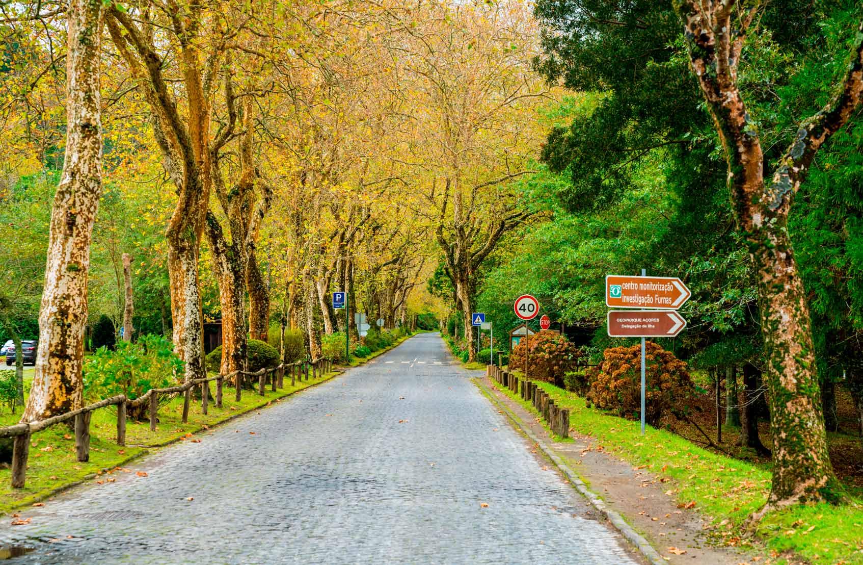 Азорские острова национальные парки