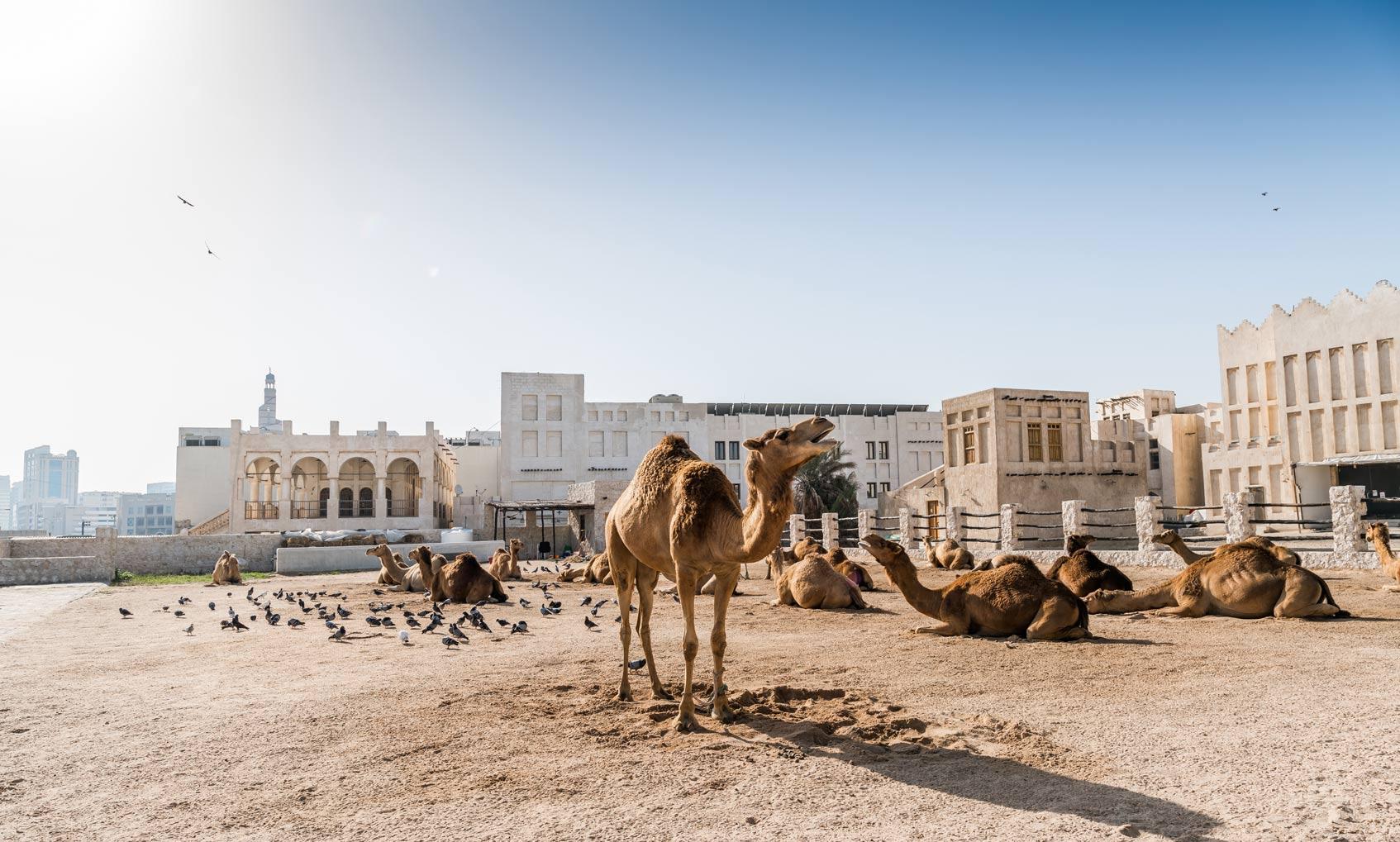 Доха исторический центр