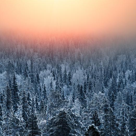 зимнй закат снег