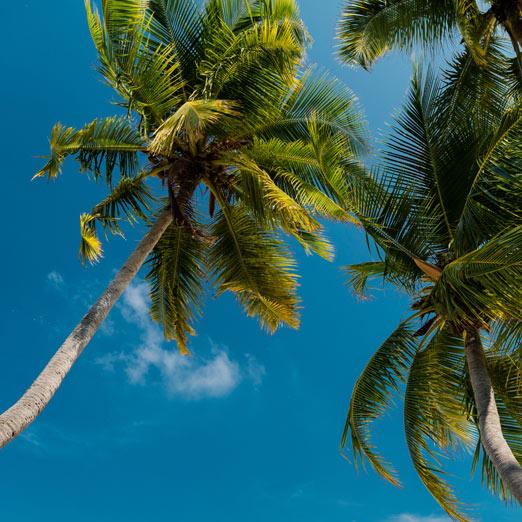 остров-резервация на Мальдивах