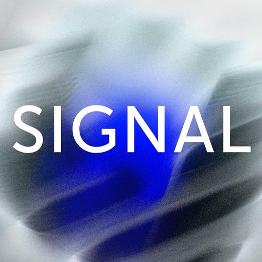 кто выступит на фестивале signal 2020