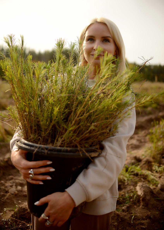 Davines посадил 20000 деревьев