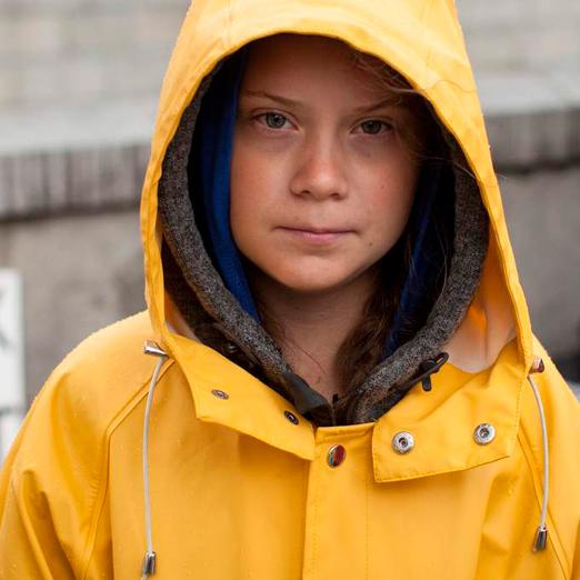 фильм о самой молодой экоактивистке