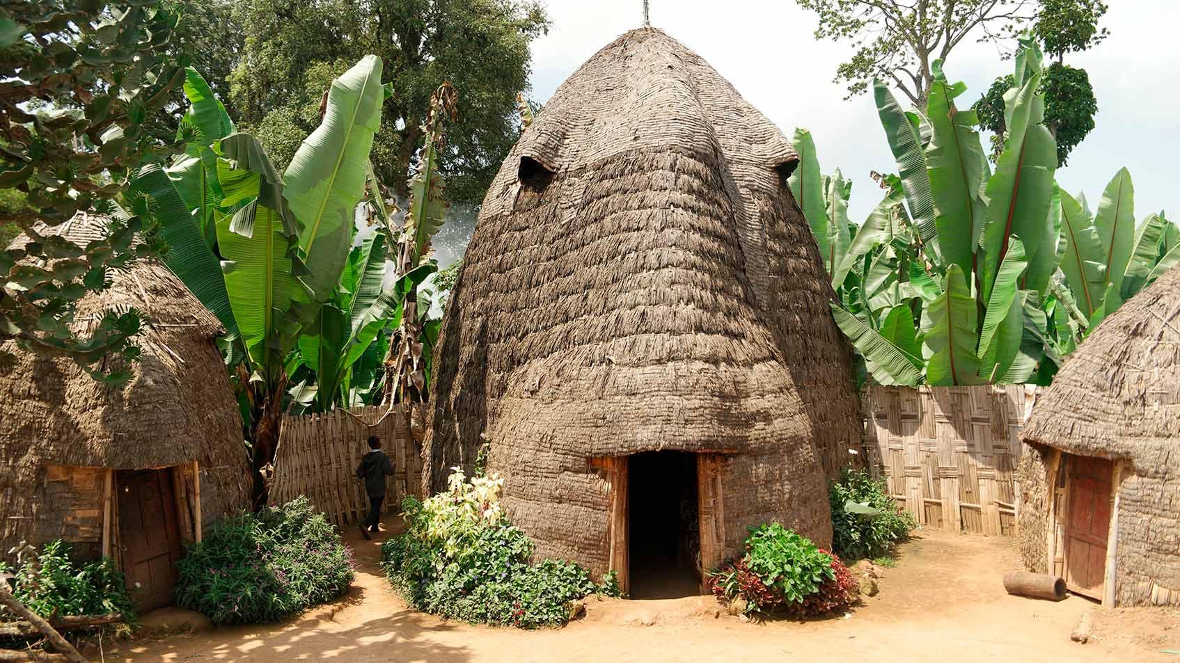 племя дорзе в эфиопии