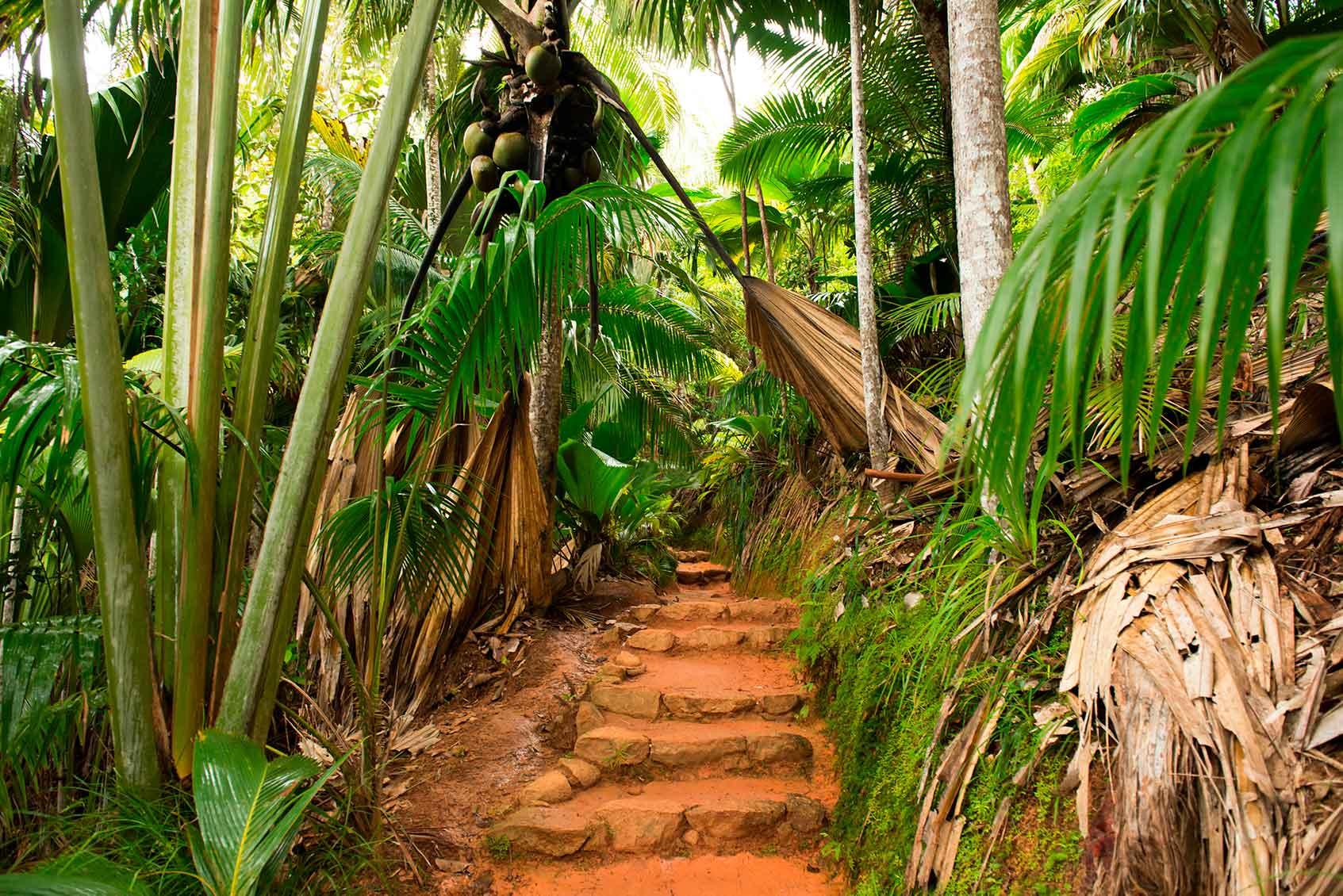 Парк Юньон-Истэйт на острове Ла-Диг