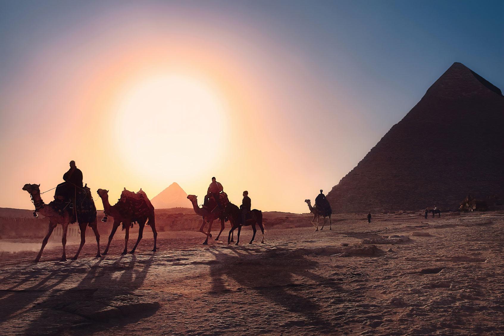 пцр тесты в египет