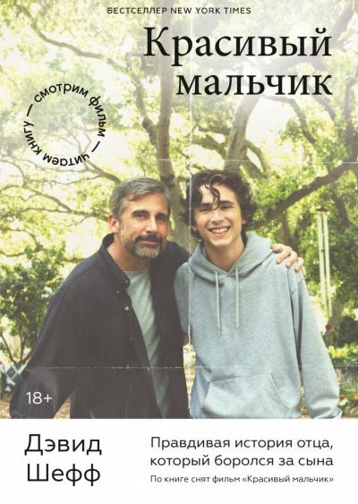 «Красивый мальчик. Правдивая история отца, который боролся за сына», Дэвид Шефф